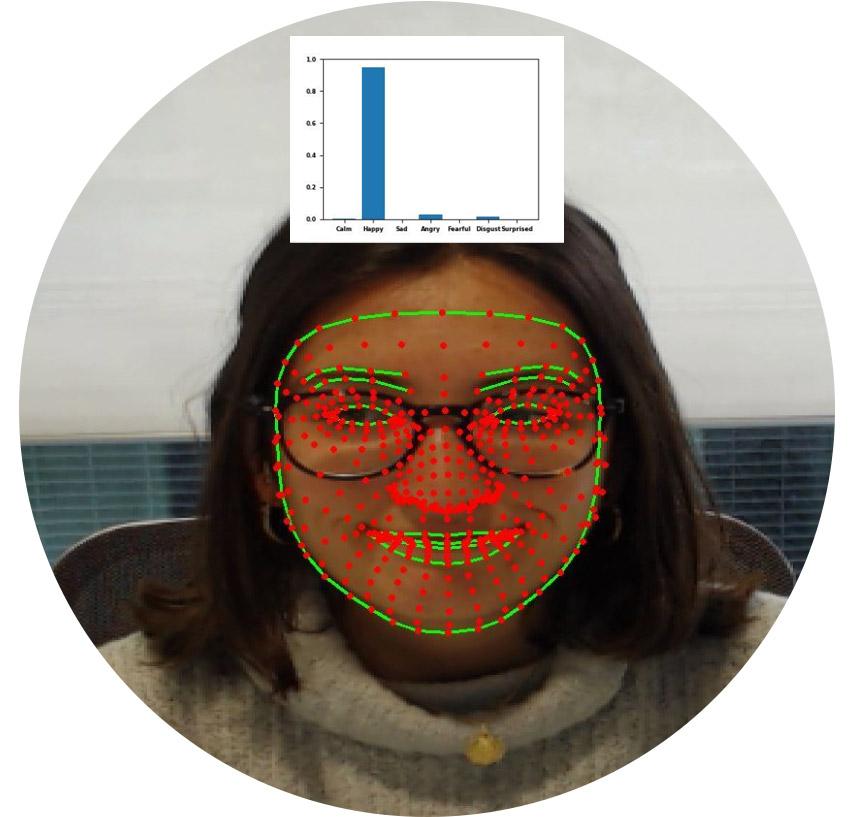 Detección de emociones Irisbond. Ete-tracking en sectores
